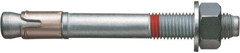 Hilti C2 Belgeli Mekanik Dubel HST 105216849